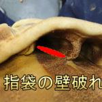 破れ修理 指袋1